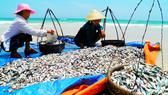 Bộ Y tế tuyên bố thủy sản 4 tỉnh miền Trung đã an toàn