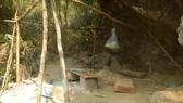 Lập đoàn liên ngành điều tra vụ phá rừng di sản Phong Nha - Kẻ Bàng