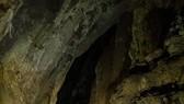 Ông Howard Limbert cho rằng Sơn Đoòng sẽ sụp đổ sau 5 triệu năm tới.