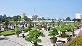 Lễ hội Bonsai và Suiseki châu Á – Thái Bình Dương lần đầu tiên được tổ chức tại Việt Nam