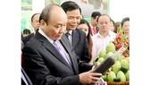 Thủ tướng Nguyễn Xuân Phúc tìm hiểu các sản phẩm của Đồng Tháp. Ảnh: THANH TÙNG