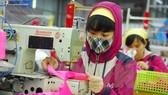 TPP giúp VN đẩy mạnh xuất khẩu hàng dệt may