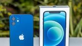 iPhone 12 với màu xanh mới