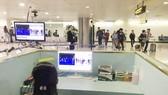 Nhân viên sân bay Tân Sơn Nhất kiểm tra màn hình hiển thị máy quét thân nhiệt đối với hành khách quốc tế đến Việt Nam. Ảnh: TTXVN