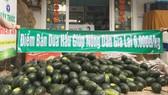 Nhiều cá nhân, đơn vị đang giúp nông dân trồng dưa hấu tiêu thụ dưa. Ảnh: LÊ NAM