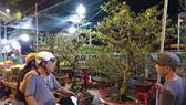 """Gần 600 nhà vườn, nghệ nhân tham gia Hội hoa xuân """"Trên bến dưới thuyền"""""""