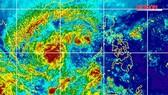 TPHCM chuẩn bị ứng phó bão số 16 (bão Tembin)