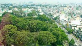 Đất vàng Nhà khách Chính phủ với vườn cây cổ thụ có tuổi đời trên dưới 50 năm và sân vườn trồng các loại hoa, cây cảnh. Ảnh: TBKTSG