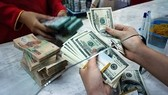 US dollar exchange rate hits new record