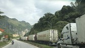 Container trucks carrying farm produce line up to wait for customs clearance. (Photo: SGGP)