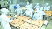 Food processing at a Korean company in Ho Chi Minh City. (Photo: SGGP)
