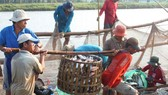 Aquatic exports expected to decline by 1.2 percent