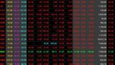 VN-Index slashes nearly 23 points