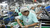 70 percent of processing, manufacturing firms see better production volume