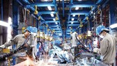 More domestic manufacturers participate in global supply chains