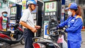 Gasoline prices slightly decline