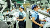 Production at Thai Tuan Company in Vinh Loc Industrial Park. (Photo: SGGP)