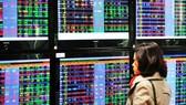 Shares rally on back of some pillar stocks
