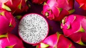 Vietnamese dragon fruit gains favor in Australia