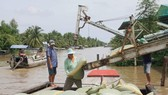 MoIT proposes two solutions to resolve rice congestion in Mekong Delta