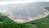 Hàng loạt dự án điện mặt trời đang triển khai xây dựng. Ảnh: CAO THĂNG