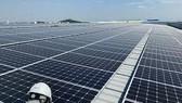 Đi tìm startup năng lượng sạch