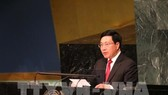 Deputy Prime Minister and Foreign Minister Pham Binh Minh (Photo: VNA)