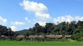 Culture - tourism village in Tan Trao commune (Photo VNA)