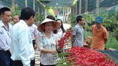 Director of the Huyen Thoai Orchid Cooperative, Dang Le Thi Thanh Huyen, presents orchids from her garden at Huyen Thoai Orchid Cooperative in An Nhon Tay commune in HCM City's Cu Chi district (Photo: VNA)