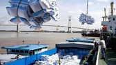 Vietnam exported 900,000 tonnes of rice worth US$410 million in January-February, up 27 percent and 32 percent, respectively. (Photo: VNA)