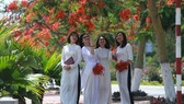 Ao Dai seeks recognition as a national intangible cultural heritage