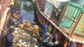 Workers remove garbage from the Ba Luu Canal in HCM City's District 8. (Photo: VNS)