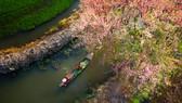 Rowing by Nguyen Xuan Trang