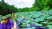 A corner of Lung Ngoc Hoang nature reserve (Photo: SGGP)