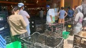Ministry of Agriculture and Rural Development proposes to reopen HCMC's wholesale markets. (Photo: SGGP)