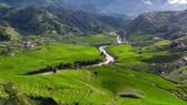 Amazing rice terraces in Sa Pa, Lao Cai province (Photo: VNA)