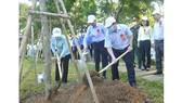 Quận 4 trồng hơn 1.200 cây xanh và tổng vệ sinh môi trường