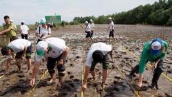 3.700 ngôi nhà an toàn cho vùng sạt lở, lũ lụt