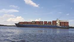 Xuất khẩu của Việt Nam đã tăng bình quân 15,02%/năm, gấp gần 5,6 lần so với bình quân của thế giới. Ảnh: N.K