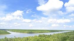 Vẻ đẹp sông nước, rừng ngập mặn Cần Giờ