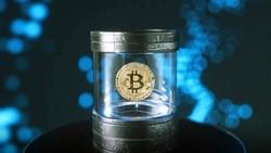 """Từ mật khẩu cho đến tiền ảo bitcoin đều có thể lưu trữ ở """"hộp thời gian"""""""