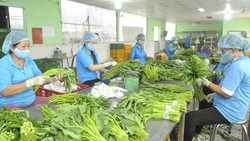 Đa dạng phương thức tiêu thụ nông sản theo chuỗi bền vững