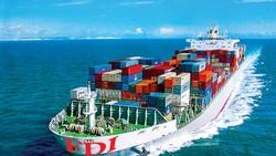 Việt Nam xuất siêu nhưng chủ yếu thuộc về DN FDI.