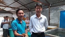 Trà Vinh sản xuất thành công giống cua biển bản địa