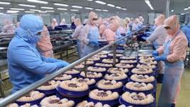 Hiệp hội Chế biến và Xuất khẩu thủy sản Việt Nam dự báo, xuất khẩu thủy sản trong quý II/2021 sẽ tiếp đà tăng trưởng 10% và đạt khoảng 2,1 tỷ USD.