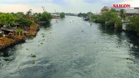 Trung bình mỗi năm ĐBSCL mất 300ha đất, rừng ngập mặn do xói lở