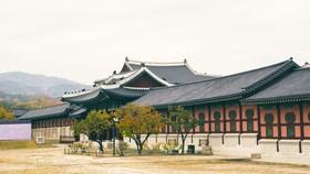 Du khách xin visa đi Hàn Quốc phải có sổ tiết kiệm ít nhất 100 triệu đồng
