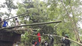 Chiến sĩ biên phòng tận dụng tre, tranh kiên cố lán trại, bám biên chống dịch, phòng mưa bão