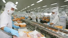 VASEP: 3 nội dung trụ cột phát triển ngành chế biến thuỷ sản