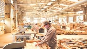 Các DN kiến nghị hỗ trợ BHXH hầu hết là DN sử dụng số lượng lao động rất lớn.